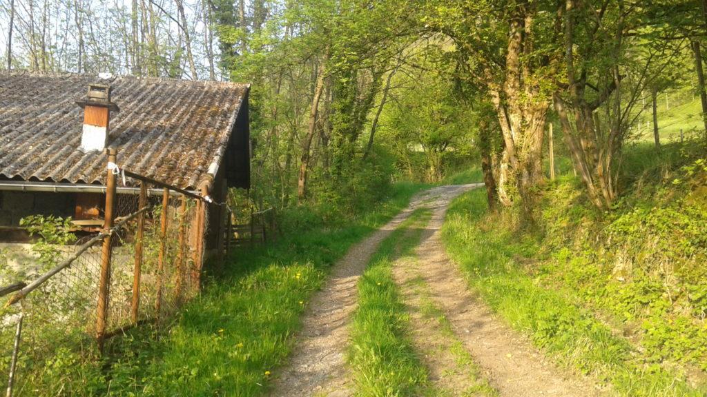 Chemin du Contour